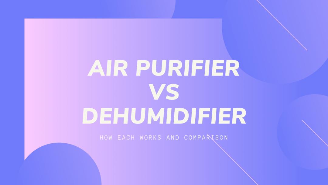 air purifier vs dehumidifier