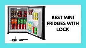 best mini fridge with lock