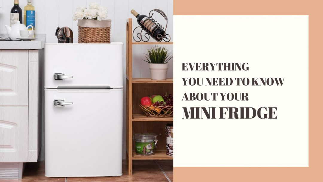 everything you need to know about your mini fridge